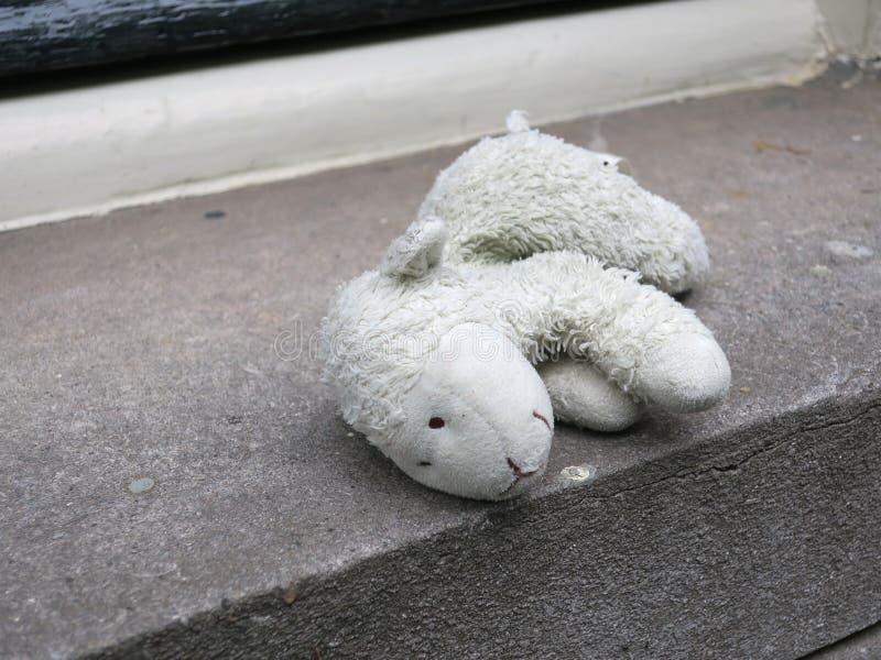 Pecore perse, giocattolo coccolo o animale farcito mettere sul davanzale fotografia stock libera da diritti