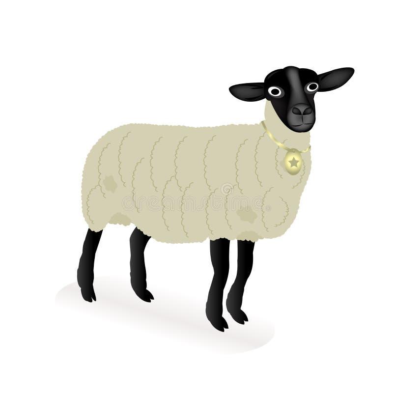 Pecore sopra priorità bassa bianca royalty illustrazione gratis