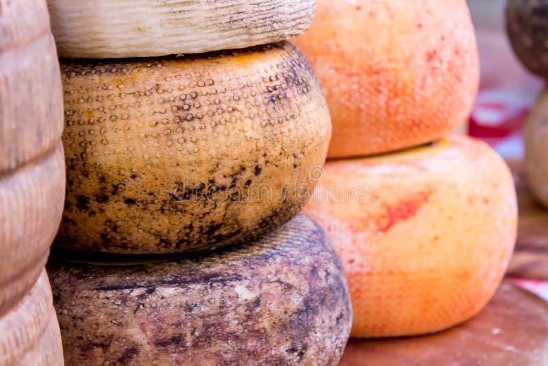 pecorino乳酪模子  免版税库存照片