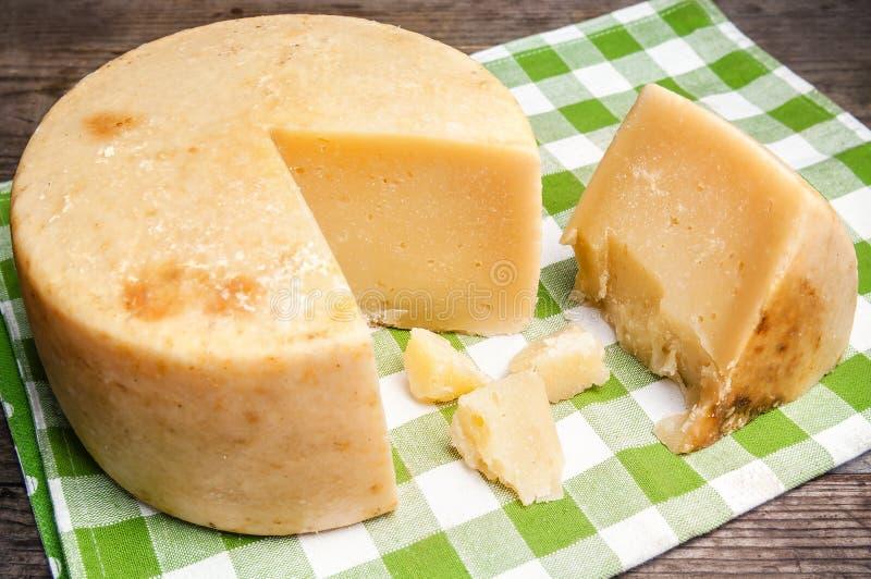 Pecorino圆的乳酪 库存图片