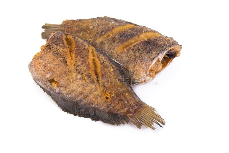 Pectoralis de Trichogaster, alimento tailandês fritado dos peixes do salid no CCB branco foto de stock royalty free