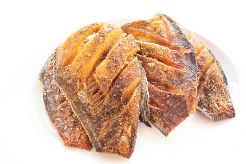 Pectoralis de Trichogaster, peixe fritado do salid imagem de stock royalty free