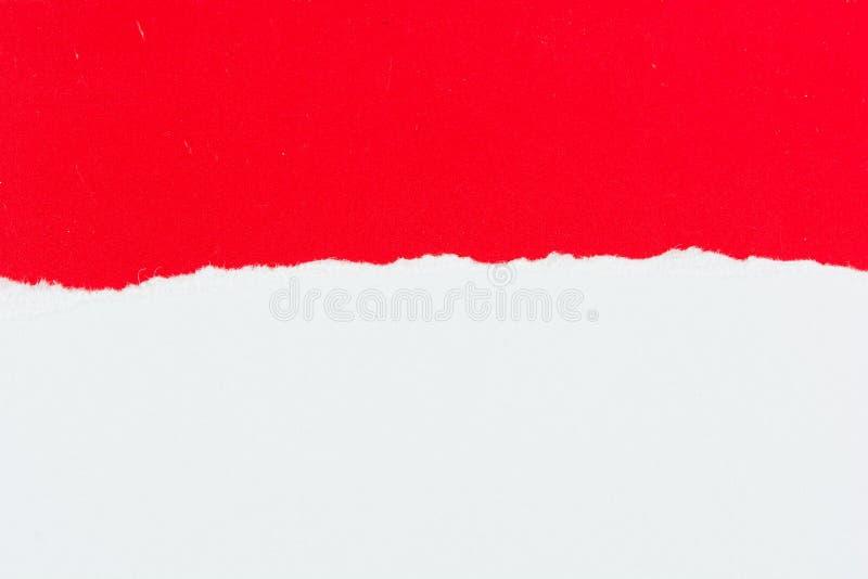 Pedaços de papel de papel vermelhos do rasgo no branco foto de stock