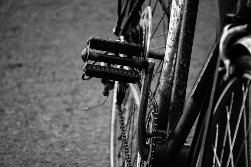 Pedal de la bici imagen de archivo libre de regalías