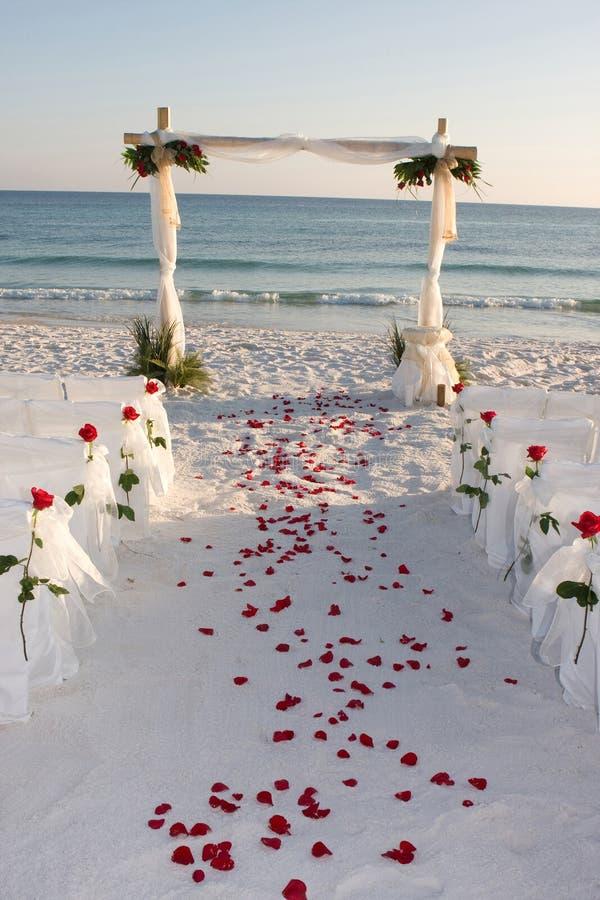 Pedali della Rosa del percorso di cerimonia nuziale di spiaggia fotografia stock