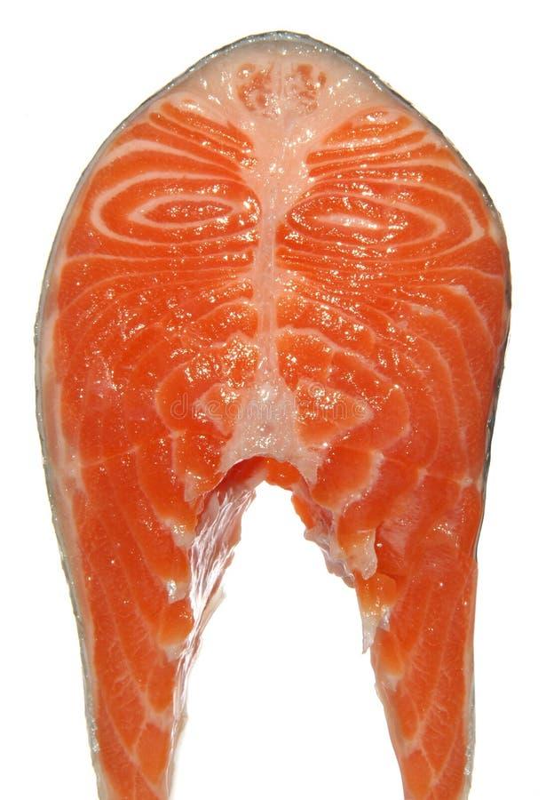 Pedazo de color salmón crudo fresco aislado en blanco imagen de archivo