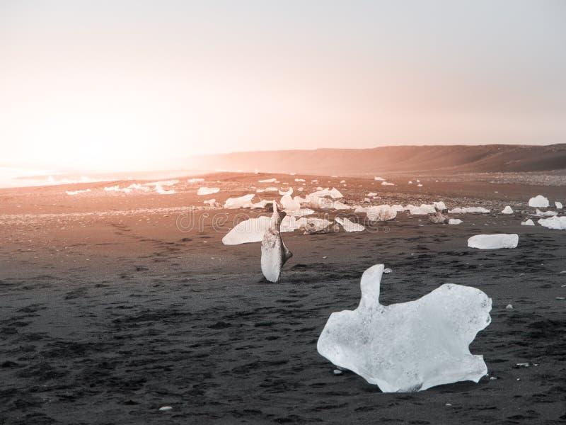 Pedazo de hielo en la arena negra, detalle natural, Islandia imágenes de archivo libres de regalías