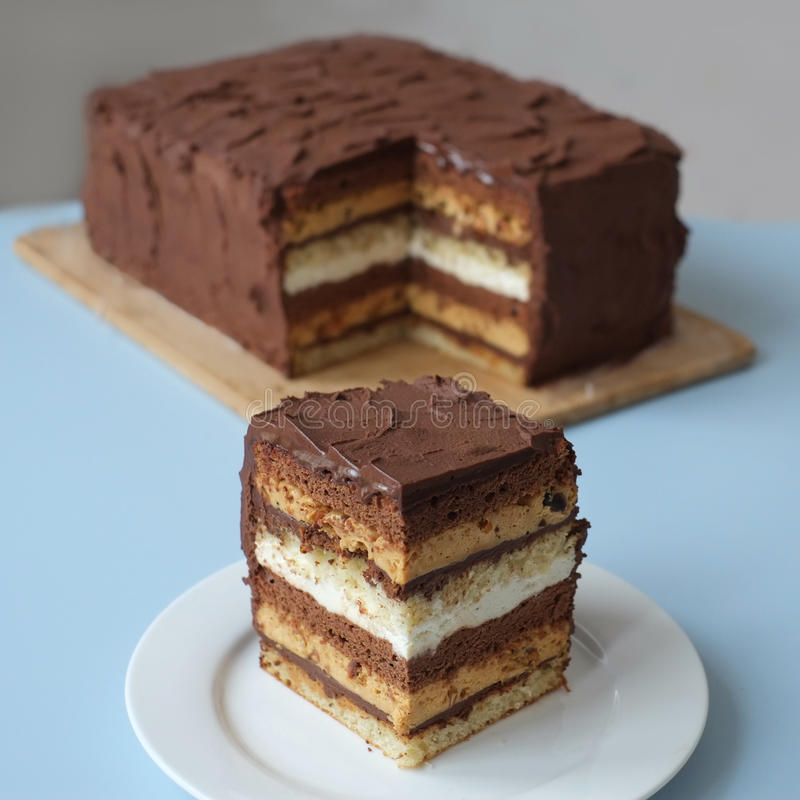 Pedazo de torta de chocolate fotografía de archivo libre de regalías