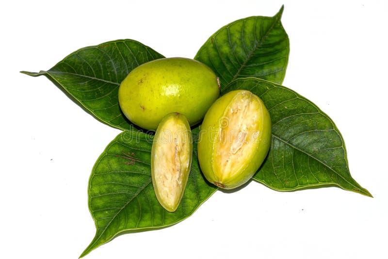 Pedazos cortados de frutas frescas de los dulcis del Spondias con las hojas verdes en el fondo aislado blanco fotografía de archivo