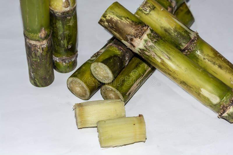 Pedazos cortados de Sugar Cane Isolated On White Background fotos de archivo libres de regalías