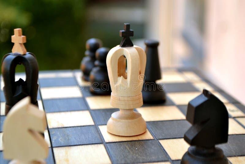 Pedazos de ajedrez en una tarjeta de ajedrez imagen de archivo libre de regalías