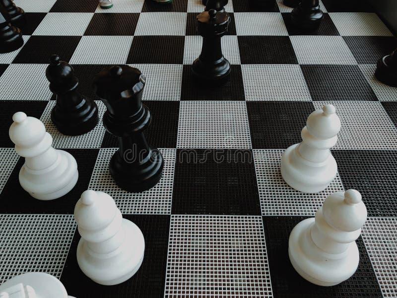 Pedazos de ajedrez grandes foto de archivo libre de regalías
