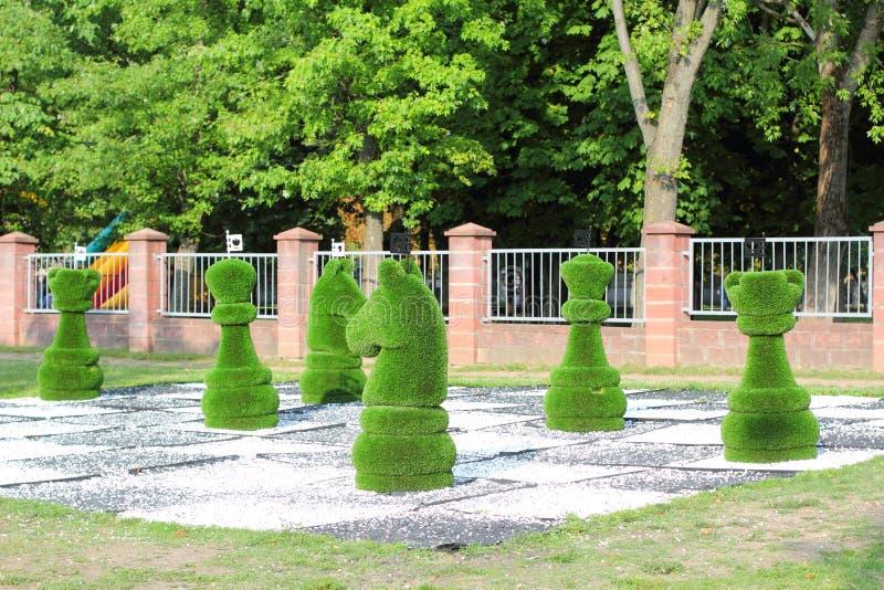 Pedazos de ajedrez grandes adornados con la hierba verde fotos de archivo