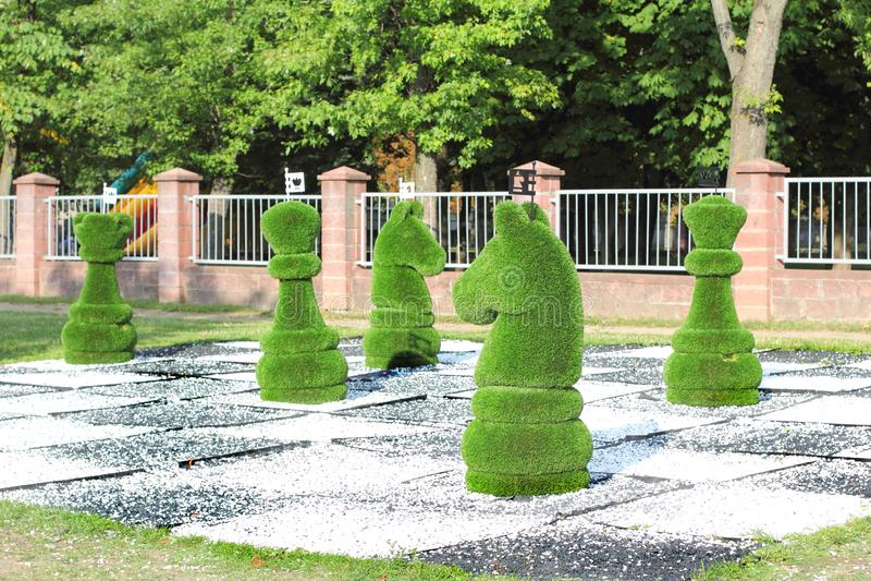Pedazos de ajedrez grandes adornados con la hierba verde imagen de archivo