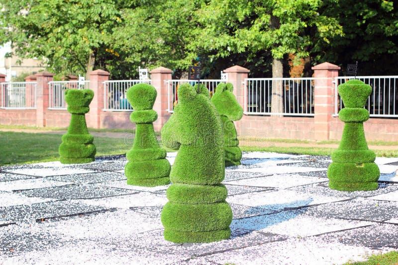 Pedazos de ajedrez grandes adornados con la hierba verde imagenes de archivo