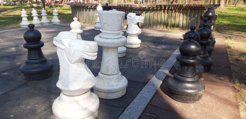 Pedazos de ajedrez para los niños imágenes de archivo libres de regalías
