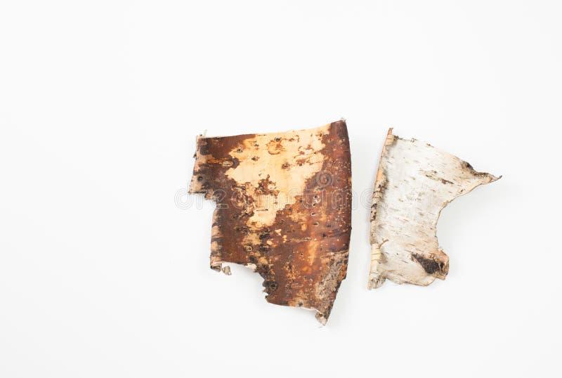 Pedazos de corteza de abedul en un fondo blanco Lugar para el texto foto de archivo libre de regalías