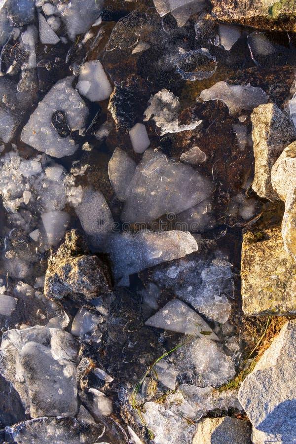 Pedazos de hielo en agua fría foto de archivo