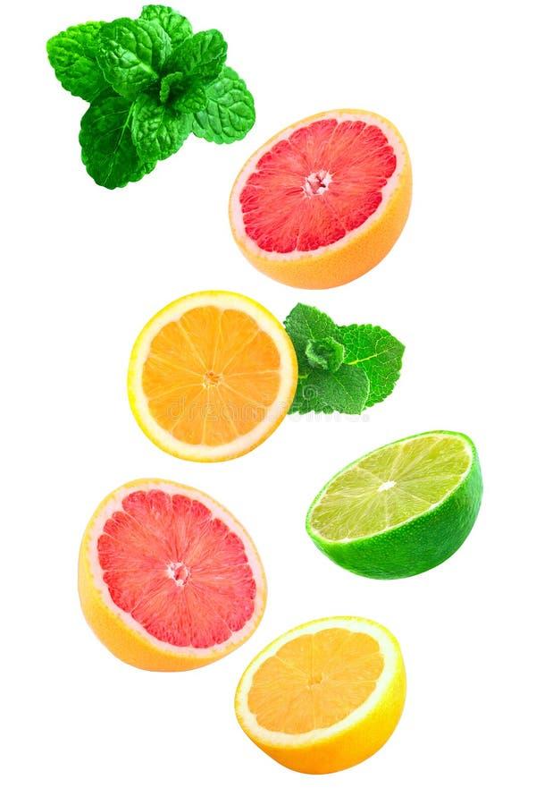 Pedazos que caen de menta, de limón y de cal aislados en blanco imagen de archivo