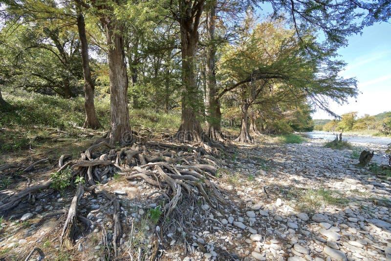 Pedernales cade parco di stato immagine stock