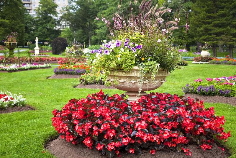Download Pedestal Garden Planters Stock Image. Image Of Leaf, Daisy    25056751