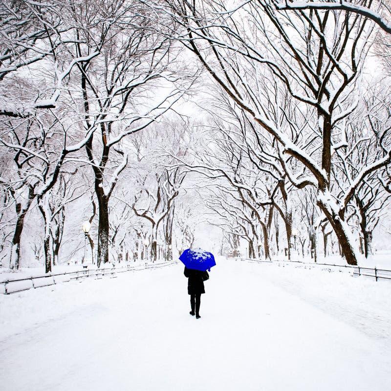Pedestre no Central Park, New York no inverno imagem de stock