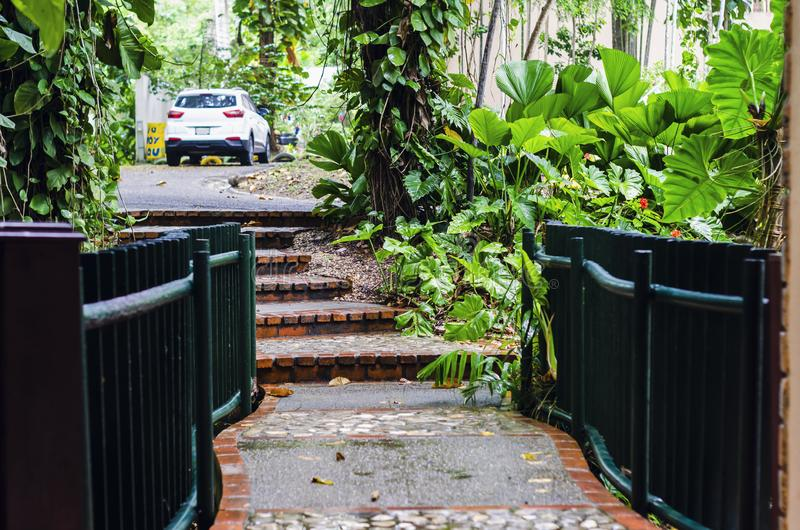 Pedestrian bridge with stairs, surrounded by vegetation and tropical freshness royalty free stock image