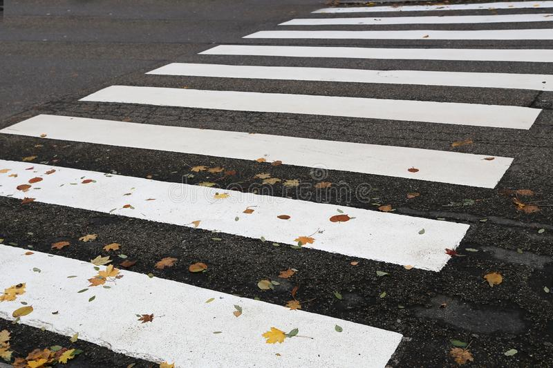 Pedestrian crossing streets. With markings in the form of a zebra royalty free stock images