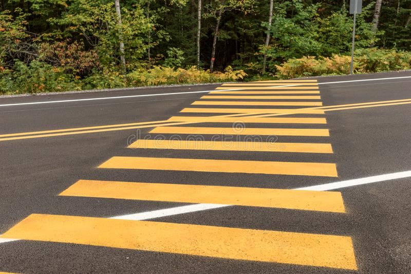 Pedestrian crossing. Yellow stripes on the street stock photo