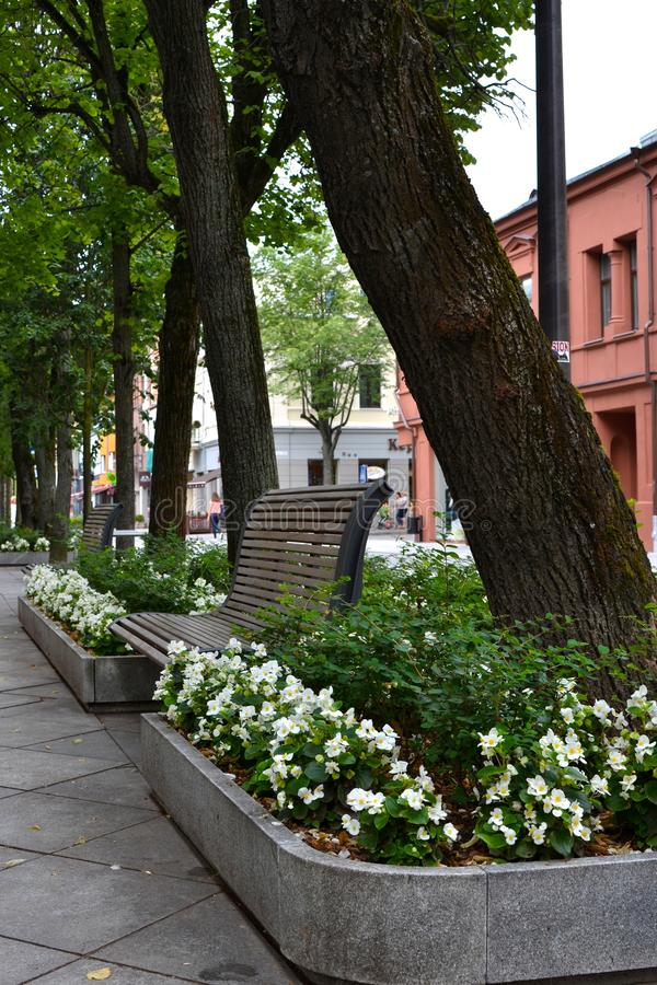 Pedestrian Street in city center of Kaunas, Lithuania stock photography