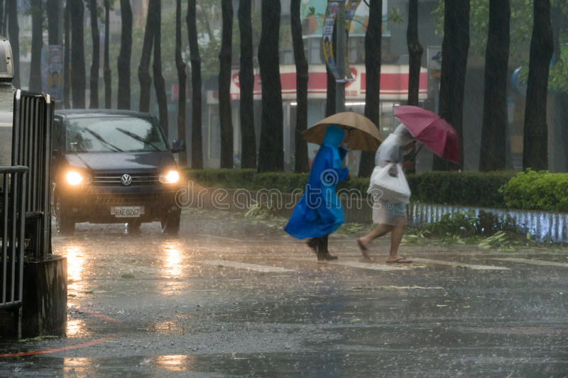 Pedestrians crossing street during Typhoon Megi. New Taipei City, Taiwan. September 27, 2016: Pedestrians struggling to cross street during Typhoon Megi stock photos