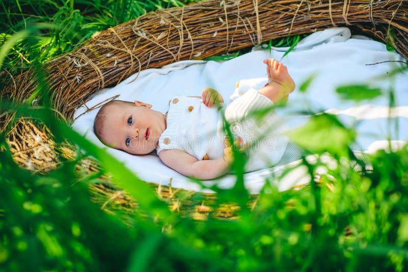 Pediatría y neonatology Cuidado recién nacido del bebé Atención sanitaria del bebé recién nacido Departamento de neonatology y de foto de archivo