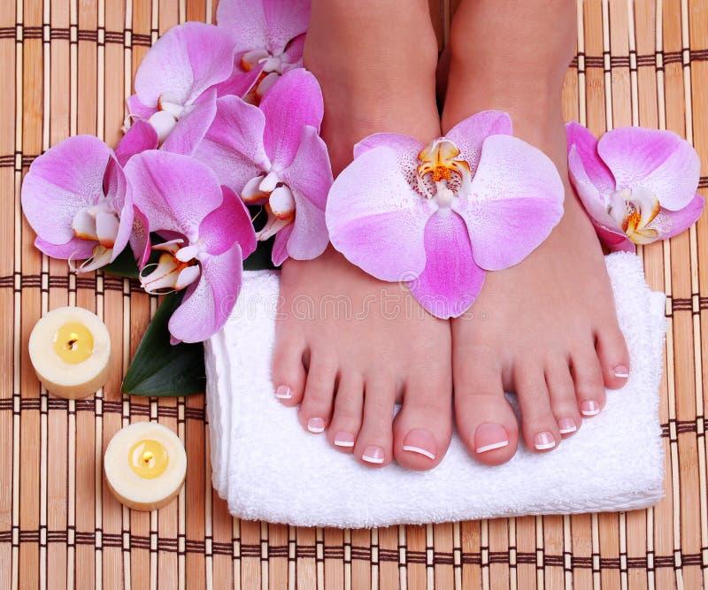 Pedicure. Bei piedi femminili con il manicure francese fotografie stock libere da diritti