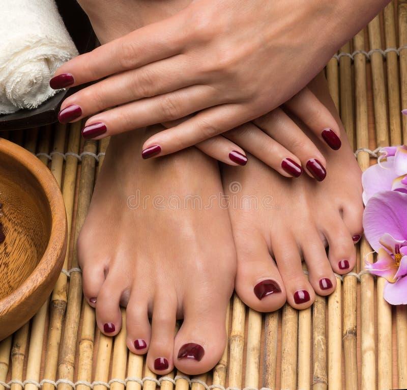Pedicure e tratamento de mãos nos termas do salão de beleza imagens de stock royalty free