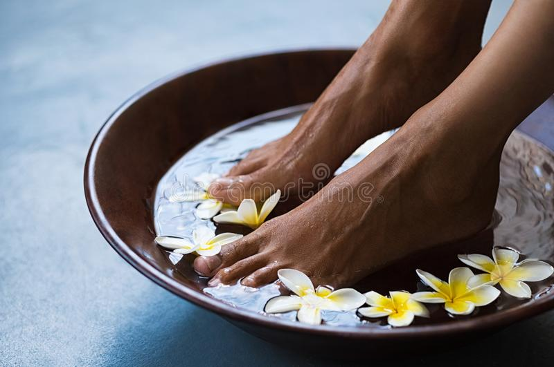 Pedicure at luxury spa. Woman soaking feet in bowl of water with floating frangipani flowers at spa. Closeup of a female feet at wellness center on pedicure royalty free stock image
