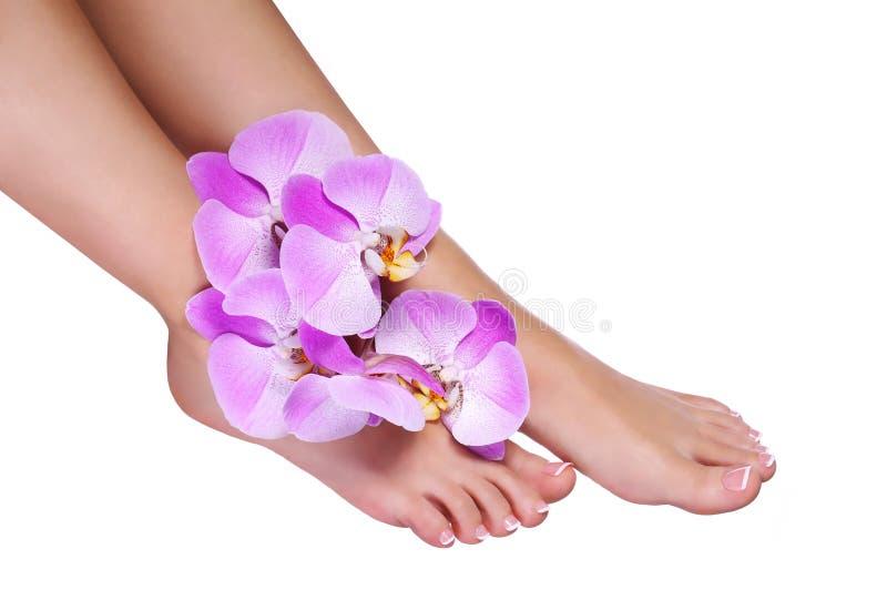 Pedicure met roze die orchideebloemen op wit worden geïsoleerd royalty-vrije stock foto's