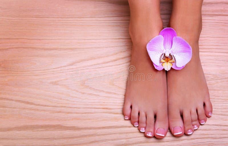 Pedicure met roze orchideebloem op houten achtergrond royalty-vrije stock fotografie