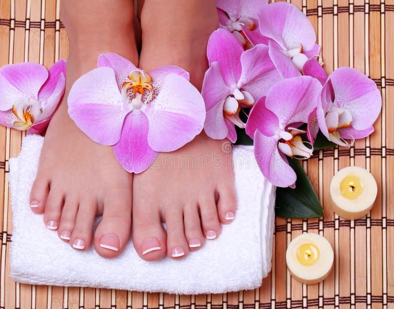 Pedicure. Mooie voeten met Franse manicure stock afbeeldingen