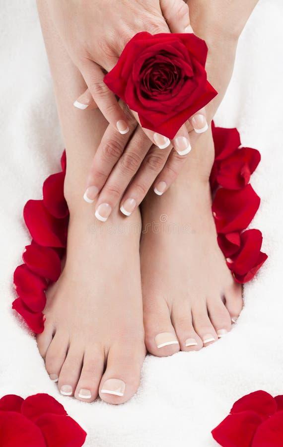 Pedicure'u manicure'u zdrój Wręcza Czerwonym różom bielu ręcznika zdjęcie royalty free