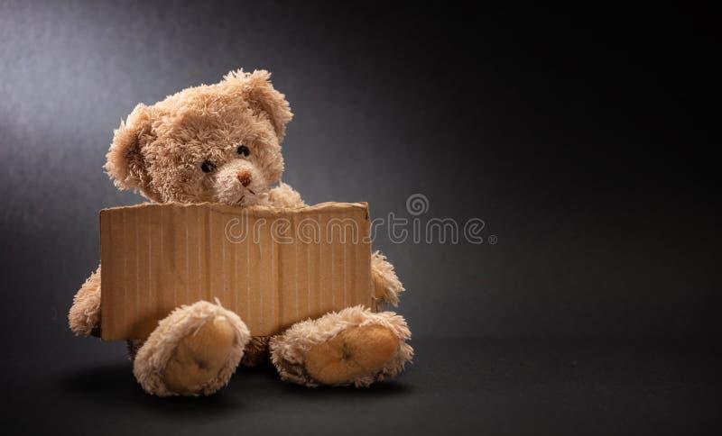 Pedido desabrigado pobre da criança Urso de peluche triste, guardando um sinal vazio do cartão imagens de stock royalty free