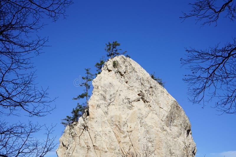 A pedra é circundada pelas árvores sob o céu no outono fotos de stock