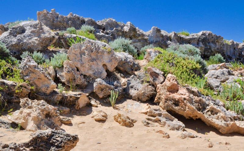 A pedra calcária cobriu dunas: Ponto Peron, Austrália Ocidental fotos de stock