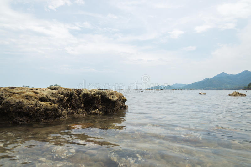 Pedra coral na água na areia do mar foto de stock royalty free