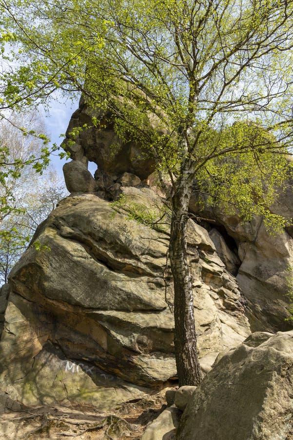 Pedra da rocha de Przadki perto de Krosno no Pol?nia fotografia de stock royalty free