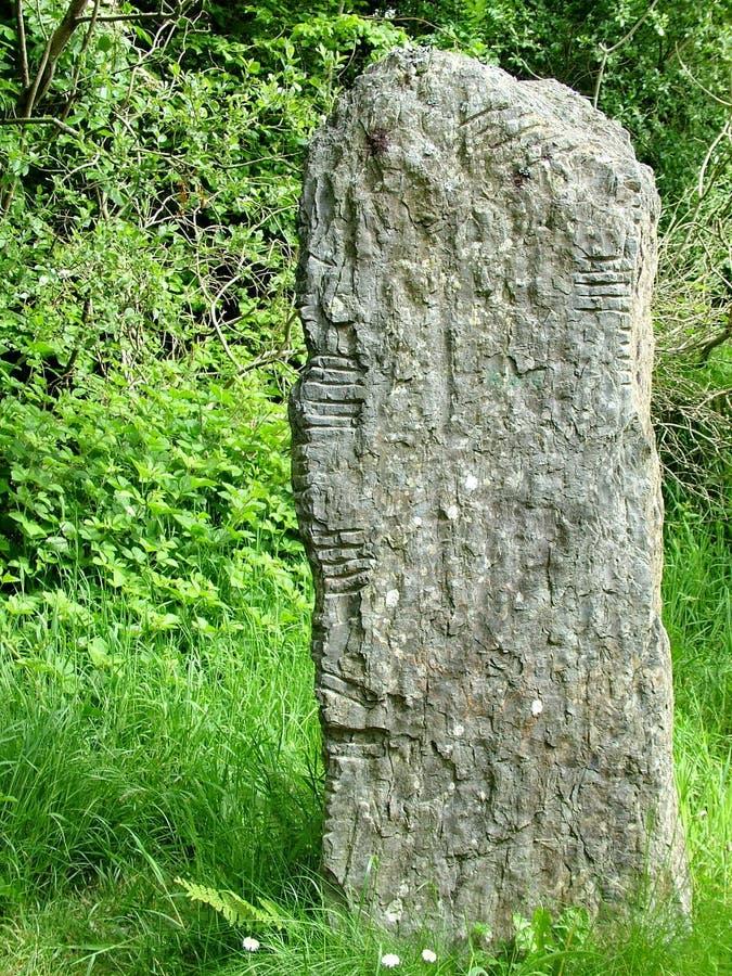 Pedra de Ogham no parque nacional irlandês da herança imagem de stock royalty free