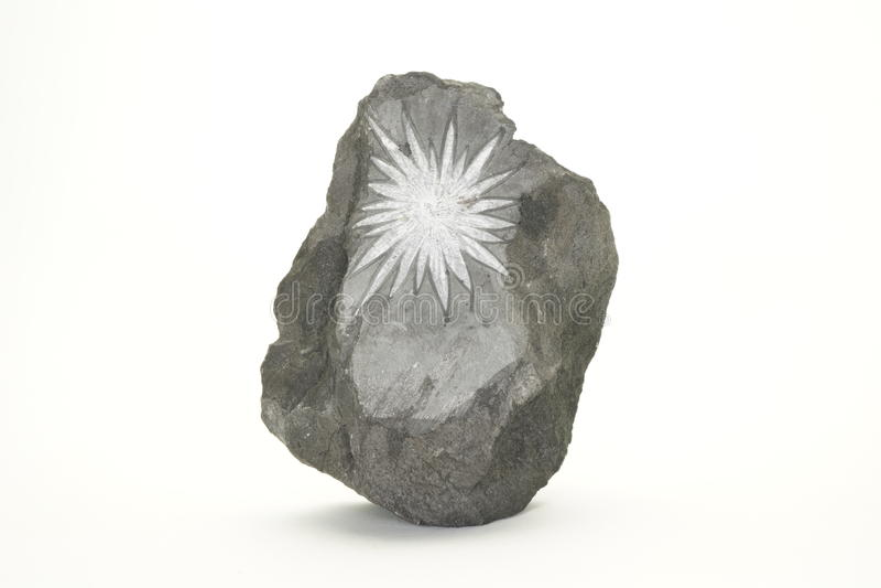 Pedra do crisântemo imagem de stock