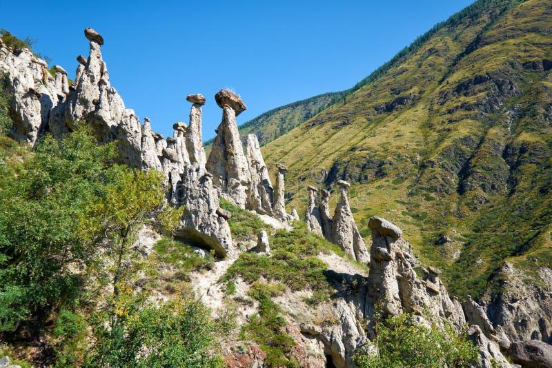 A pedra do fenômeno da natureza cresce rapidamente em montanhas de Altai perto do rio foto de stock