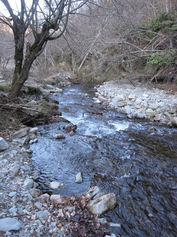 Pedra e árvores da natureza do rio fotografia de stock royalty free