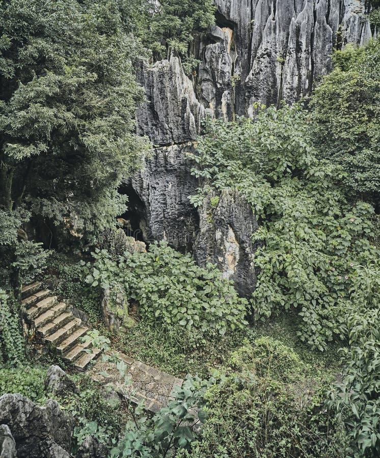 Pedra Forest Shilin na província de Yunnan, China imagens de stock royalty free