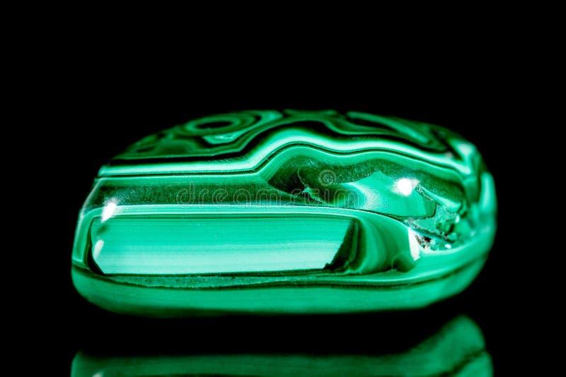 Pedra mineral da malaquite do verde de Trumbled na frente do fundo preto imagem de stock